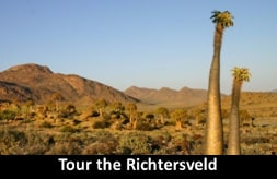 Tour the Richtersveld